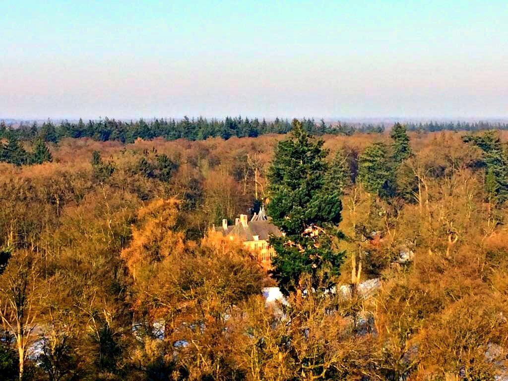 Hoogste boom van Nederland Kroondomein Het Loo Apeldoorn